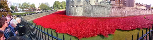 Magnificent Poppies at the Tower Of London Installation!