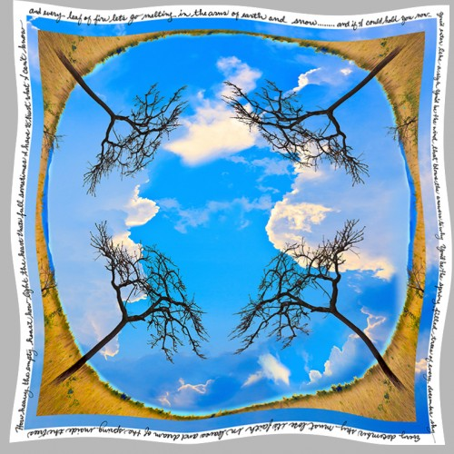 """Every December Sky"" Blue Sky Tree Scarf 36x36 inches printed on 12.5 silk charmeuse"